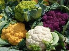 La Distribution des Produits Alimentaires Italiens